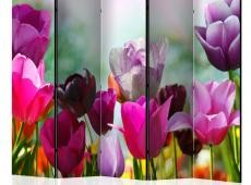 Paraván - Beautiful Tulips II [Room Dividers]